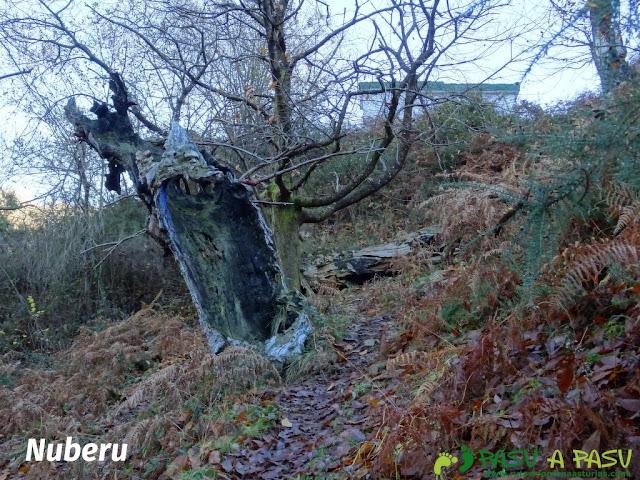 Nuberu en la ruta de Beyu Pen