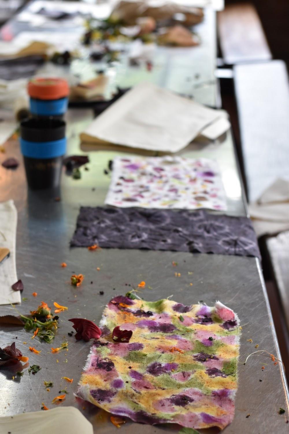 katiecrackernuts.blogspot.com.au || testing plant materials as dyes at Wild Rumpus Jamboree