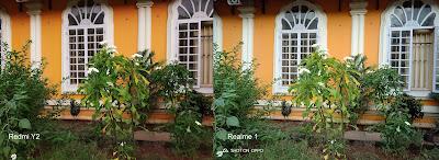 Xiaomi Redmi Y2 vs Realme 1 Camera comparison
