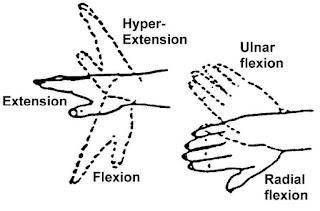 ROM pergelangan tangan dengan gambar