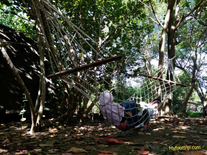 hutan bakau jakarta utara