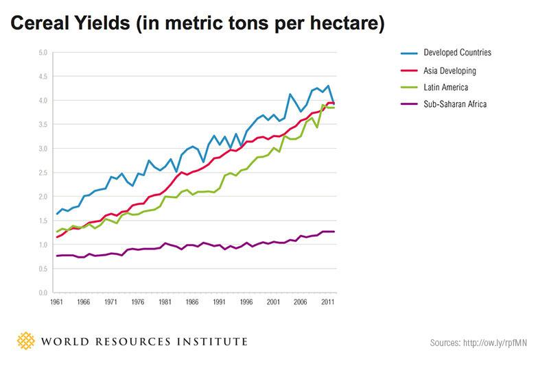 Wereldwijde graanproductie per ha