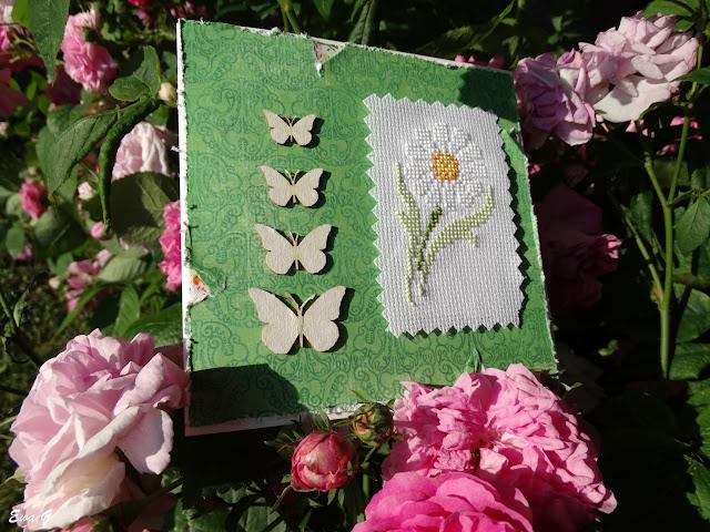 Kwiatowa wymianka kartkowa - stokrotki