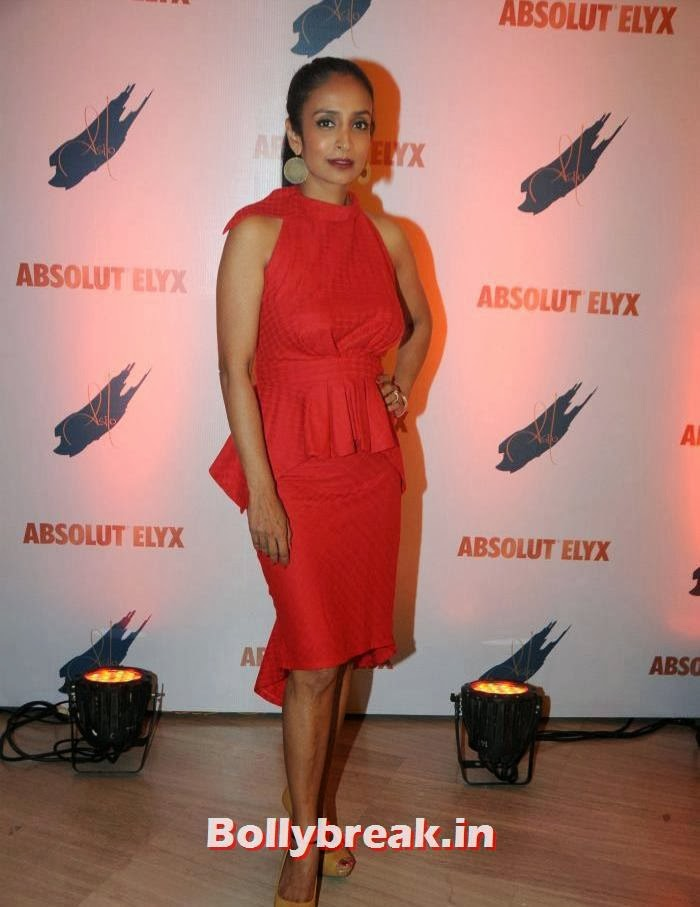 Suchitra Pillai, Suchitra Pillai Hosted Absolute Elyx Party
