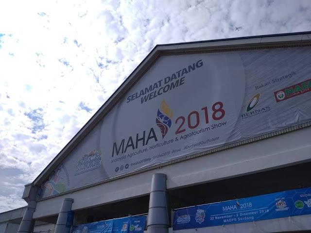 MADA ANJURKAN PELBAGAI AKTIVITI SEMPENA MAHA 2018