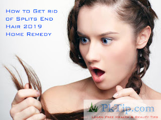 How to Get rid of Splits End Hair 2019 Home Remedy