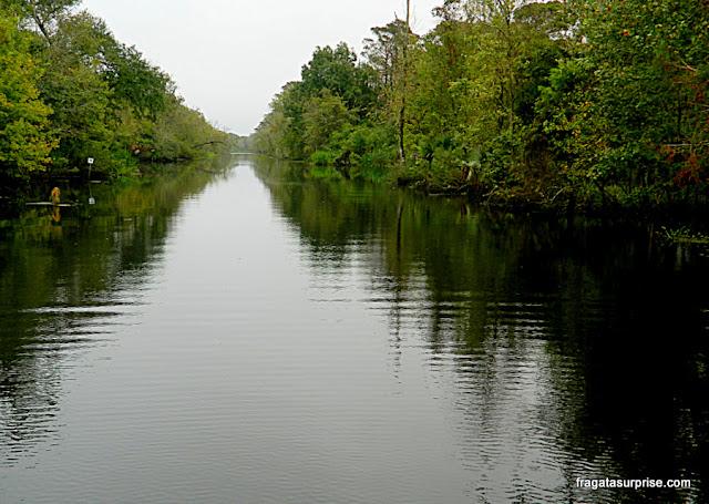 Bayou, braço de rio em um pântano da Luisiana