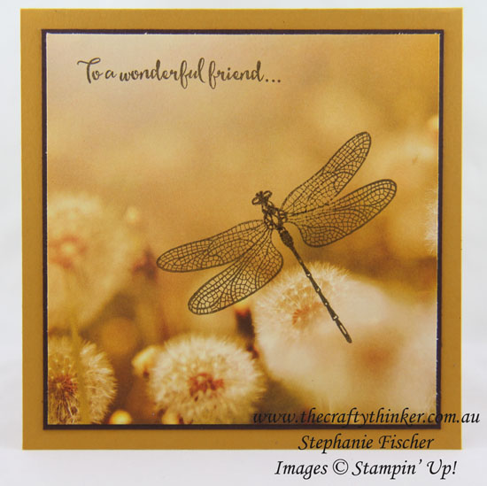 Serene Scenery, Dragonfly Dreams, Quick card, #thecraftythinker, Stampin Up Australia Demonstrator, Stephanie Fischer, Sydney NSW