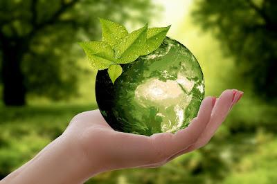 Si tu poti contribui la un mediu inconjurator curat