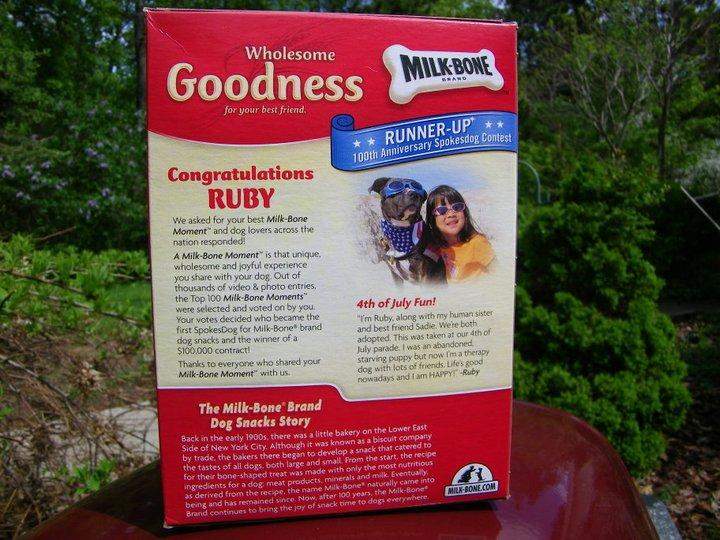 Elderbulls 21st Century Pit Bull Dogs In Advertising