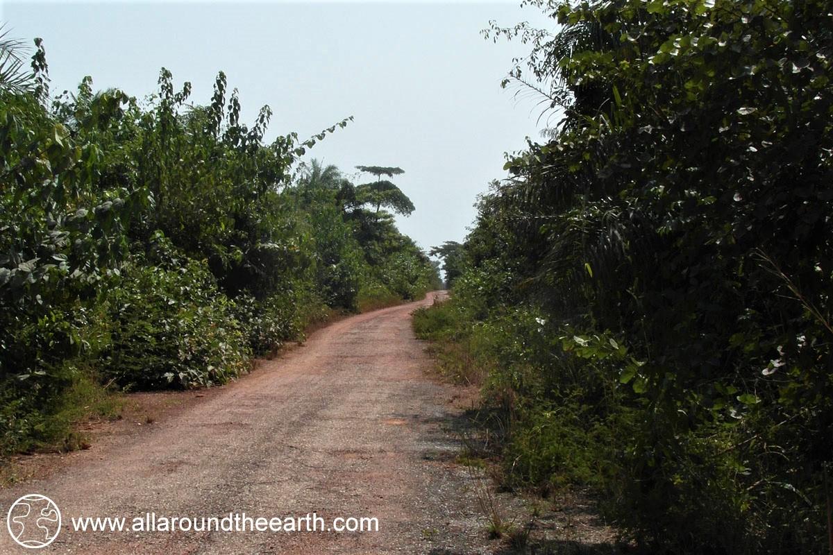 Main road of Bubaque Island, Bijagos Archipelago, Guinea Bissau, West Africa
