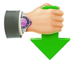 تحميل برنامج Internet Download Accelerator 6.17.2 لتحميل الملفات