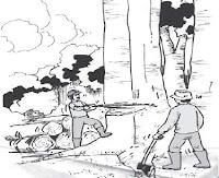 keseimbangan ekosistem, pelajaran ipa kelas 6 sekolah dasar