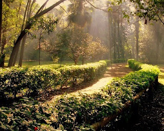 Destination, Travel Ideas, Parks
