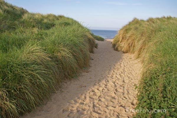 Image: Picture of the footpath to the beach at Embleton Bay, Northumberland (c) FreeFoto.com. Photographer: Ian Britton