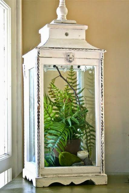 ferns , lantern, spring decor, centrepiece