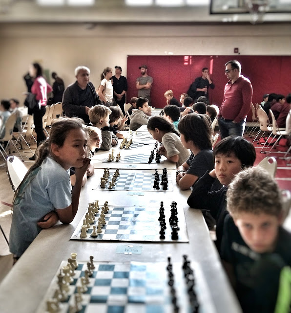 american chess academy chess tournament