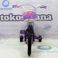 12 erminio 2205 ctb sepeda anak