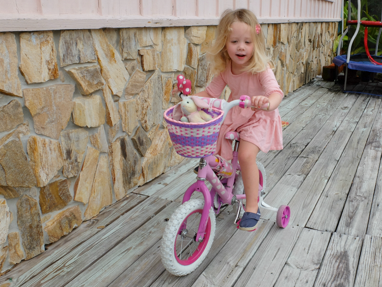 Sweet Turtle Soup - Her First Big Girl Bike
