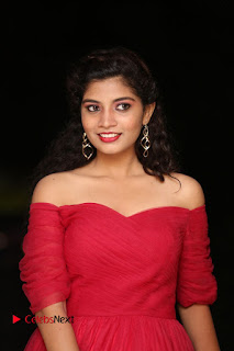 Actress Bindu Pictures in Red Dress at Attarillu Movie Press Meet 0003.JPG