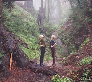 Taylor Swift with Karlie Kloss:I stand in the woods!
