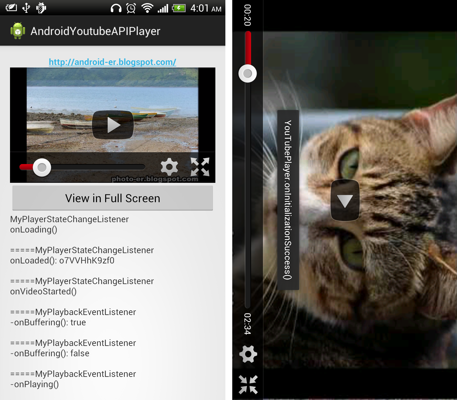 Android-er: Force YouTube Android Player to run in full screen mode