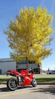 Classic Italian Hot Rodding Ducati 916