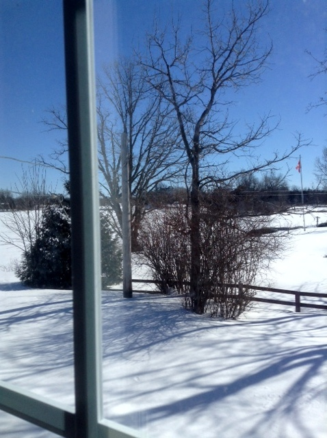 Snow and sunshine in Manotick.