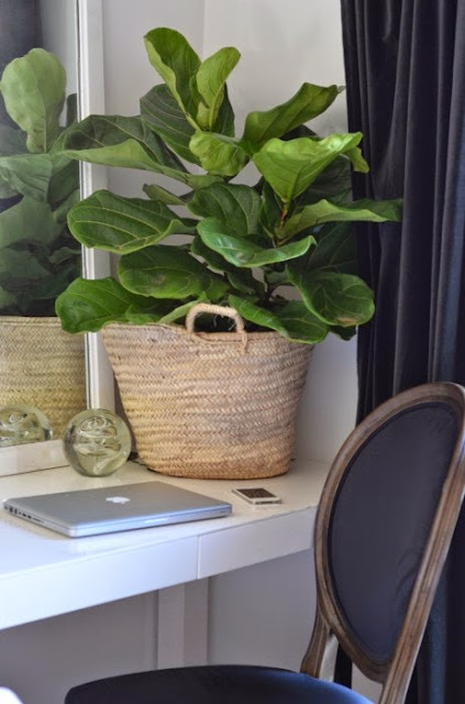 Decorar con cestas naturales y plantas-3