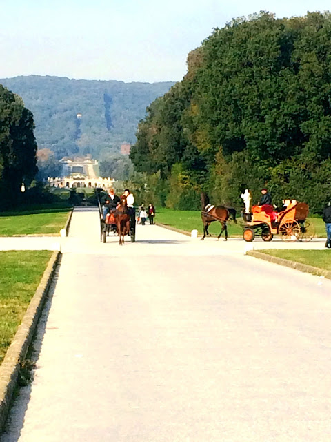 gardens-caserta-horse-carriage