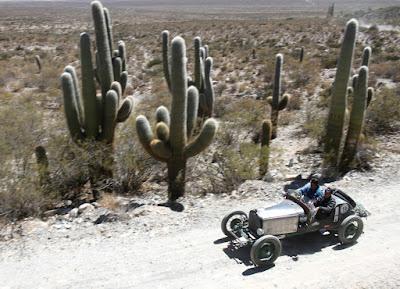 Cactus visitados pelas baquets numa relação de escala surpreendente.