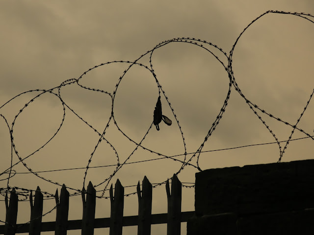 Razor wire on wall with railings and bag.