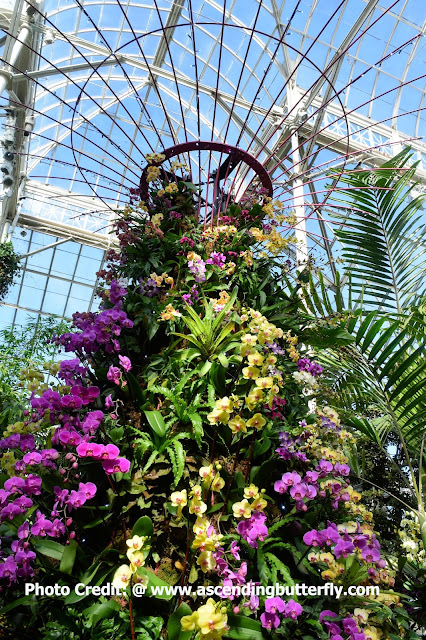 Supertree of Gardens by the Bay Singapore Replica, Enid Haupt Conservatory, The New York Botanical Gardens, Orchid, Orchids, Flowers