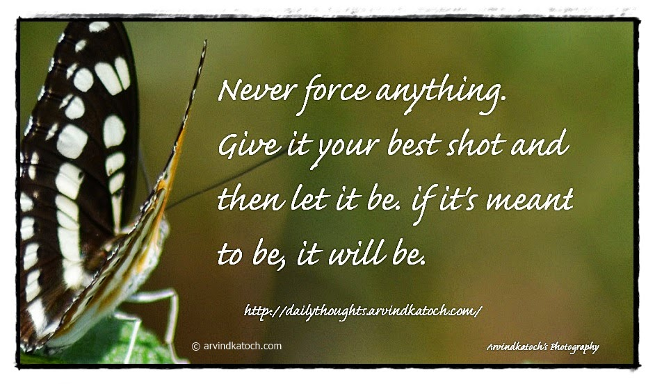 Force, quote, thought, butterfly, shot,