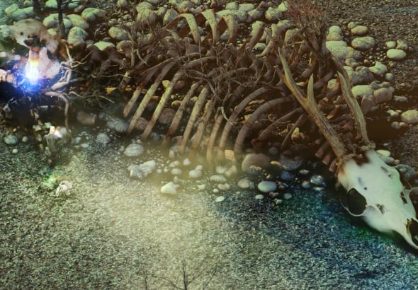 Esqueleto de un herbívoro de enormes proporciones.