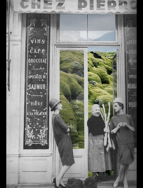 14-Grass-Shop-Merve-Özaslan-Natural-Act-Photographic-Collage-Humans-with-Nature-www-designstack-co
