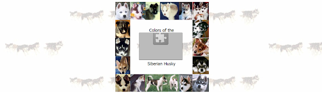 Portada Web de Husky Colors