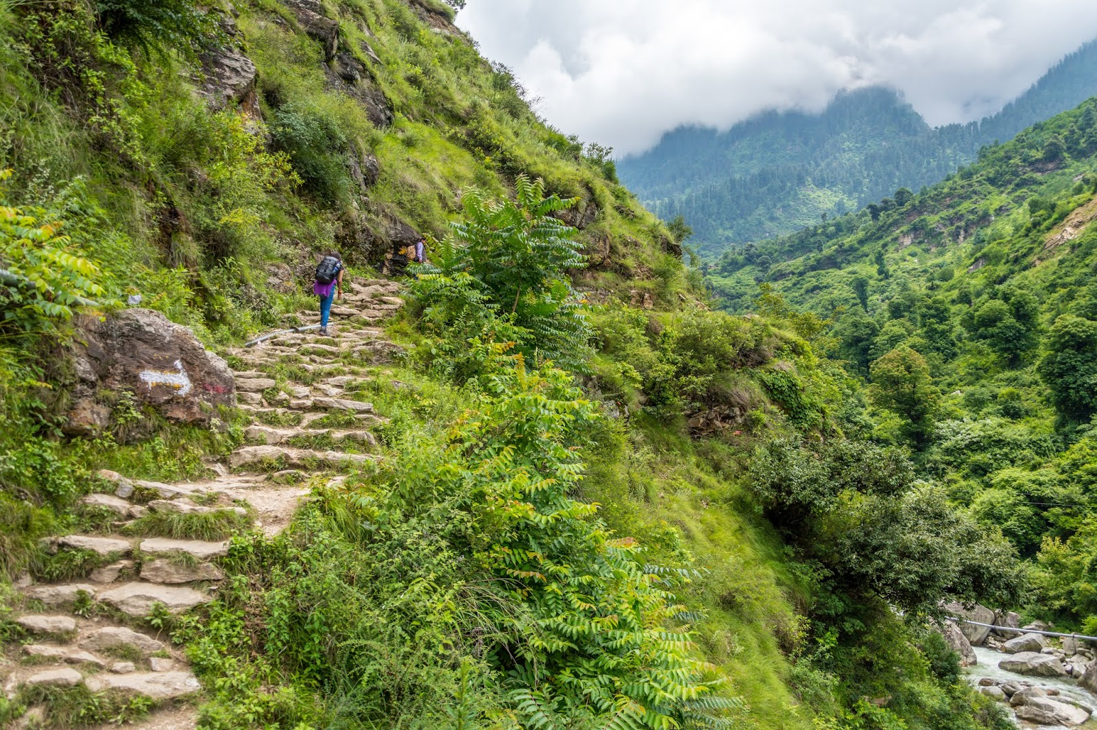 Paved path to Srikhand Mahadev Trek, which was easier