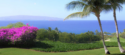 maui weddings, maui wedding planners, maui photographers, maui wedding coordinators