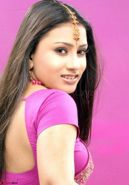 Bollywood Actress in Saree Spicy Pics 01.jpg