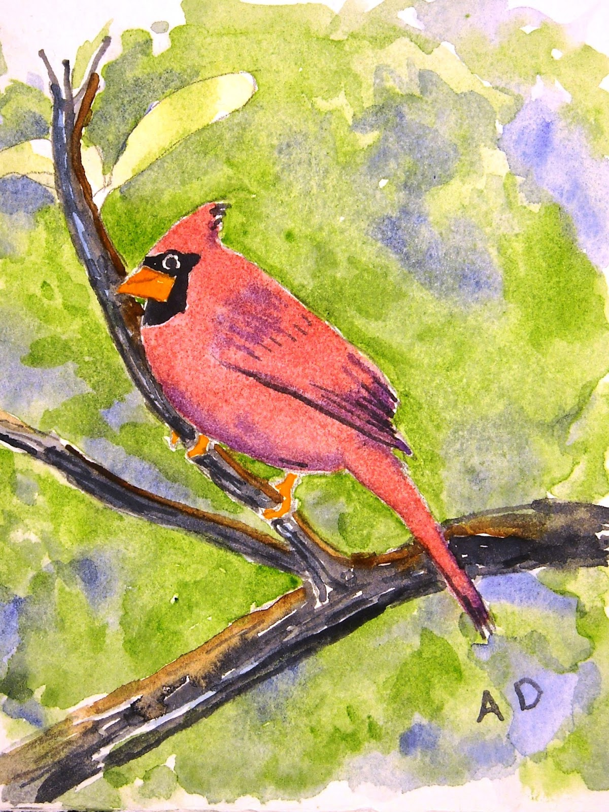 Artist Adron Watercolor Of Cardinal Bird On A Branch