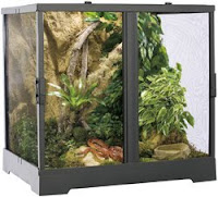 Blog About Frogs Setting Up Your Frog S Terrarium