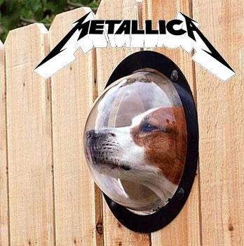 alternative album covers metallica the black album