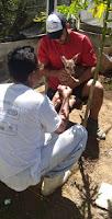 Animal silvestre é encontrado em Nova Palmeira; animal morreu horas depois