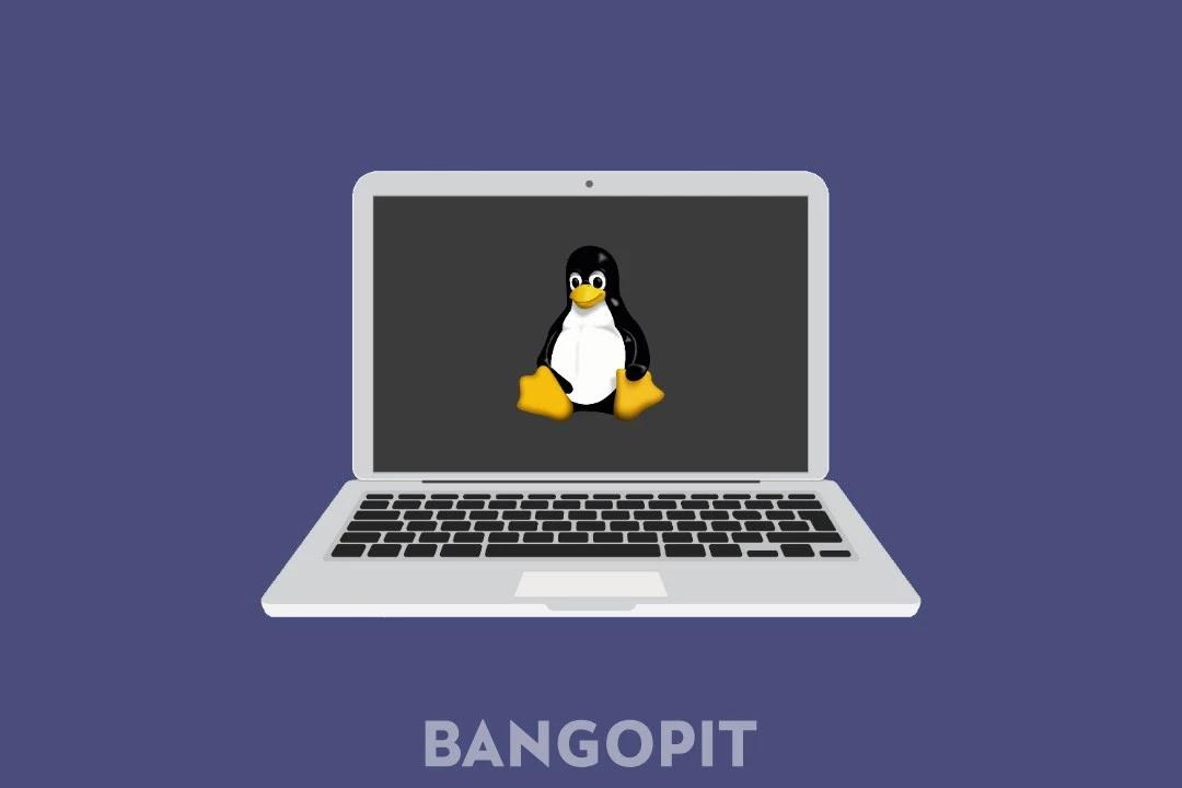 5 Daftar Distro Linux Terbaik Untuk Developer dan Programmer