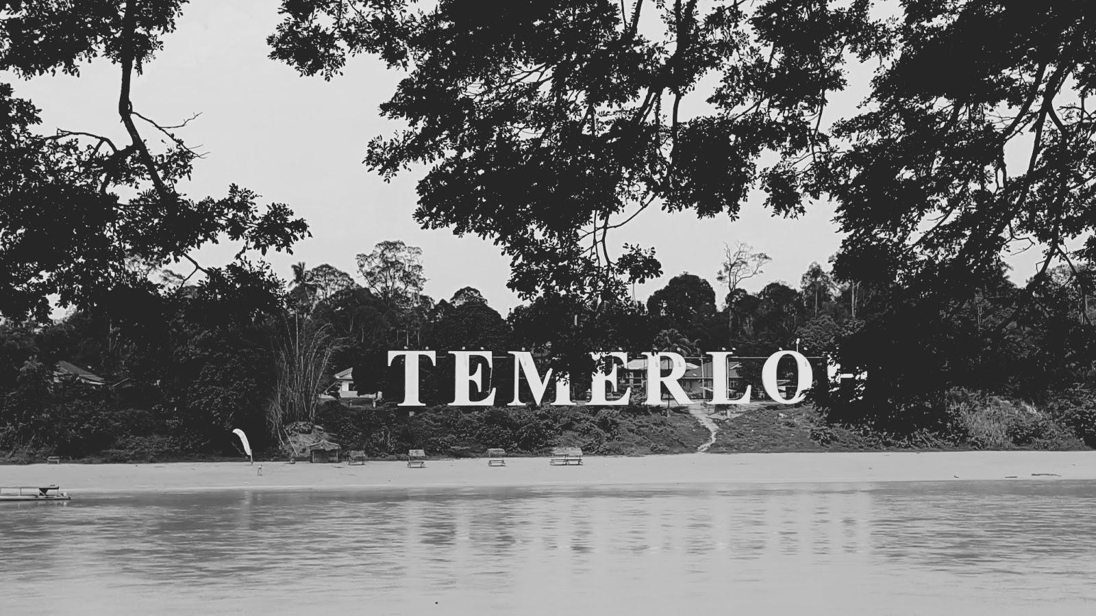 Temerloh, bandar ikan patin