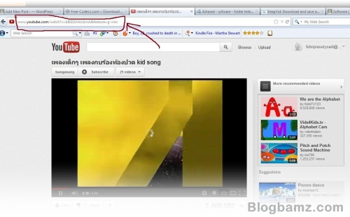 Cara Download Video Youtube Tanpa Software