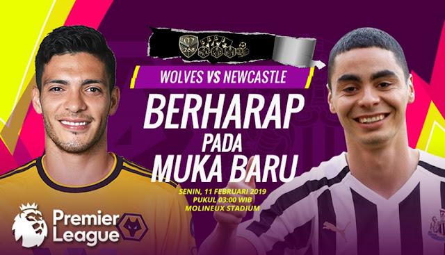 Prediksi Wolverhampton Wanderers Vs Newcastle United, Selasa 12 Februari 2019 Pukul 03:00 WIB