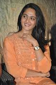 Anushka at Singham 2 Pressmeet-thumbnail-2