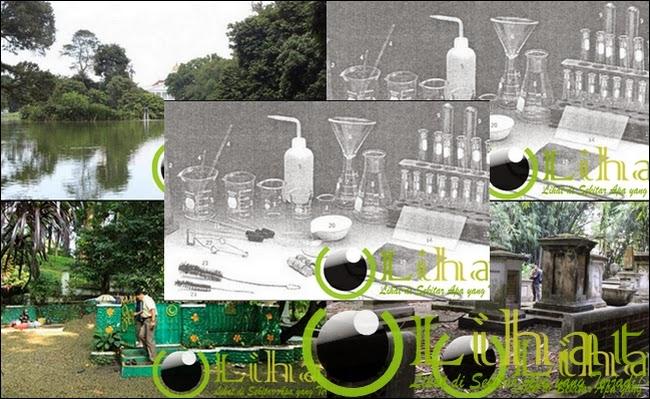 5 Tempat Angker Menyeramkan di Kebun Raya Bogor